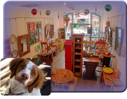 Art Home store and Cooper, our dog